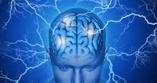 5 Effective ways to Boost Brain Power